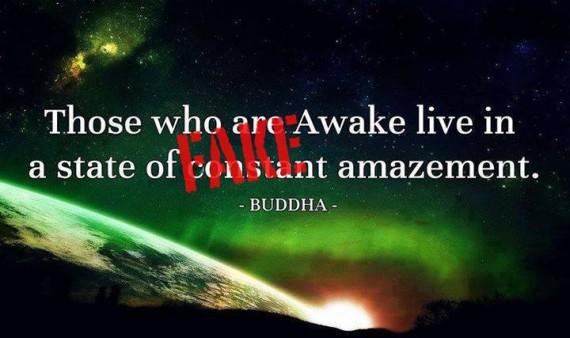 those who are awake